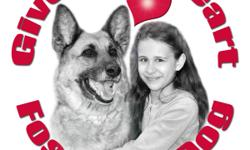 Manitoba German Shepherd Rescue is a registered non-profit organization dedicated to helping as many German Shepherds and German Shepherd crosses as we can find loving forever families. We can only do this with the help of foster homes! Please consider
